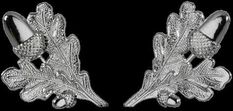 Eichenlaubpaar